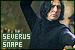 Severus Snape (Harry Potter):
