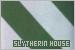 House: Slytherin (Harry Potter):
